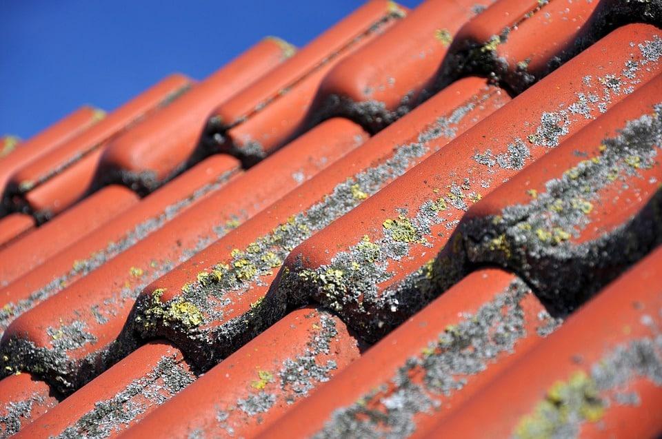 ניקוי גגות רעפים