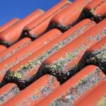 4 טיפים לניקוי הגג